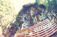 【キャンプ場レポート】昭和の森フォレストビレッジ 2017年のUpdate - Doors , In & Out !    SAMのキャンプブログ