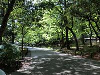 植物園 - 号号日記