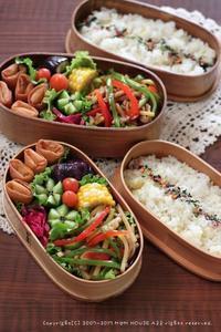 青椒肉絲とミニ春巻き ✿ 初収穫!ベビーアスパラ(๑¯﹃¯๑)♪ - **  mana's Kitchen **