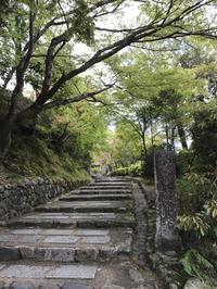 あだし野念仏寺~落柿舎~野宮神社 - まましまのひとり言