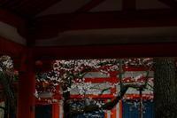 平安神宮 - 錦眼鏡