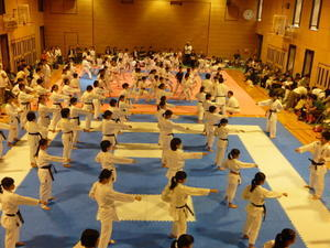 H29年度合同練習会(クラブ体験)のご案内 - 大阪学芸 空手道応援ブログ