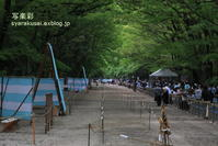 下鴨神社に行く - 写楽彩
