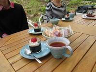 裏庭でお茶♡ - ユリ 百合 ゆり 魚沼農場の日々