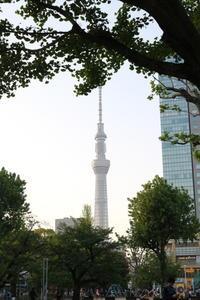 【亀戸天神社】 - うろ子とカメラ。
