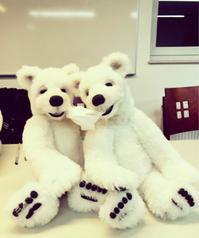 "Germany Diary-3 class room シロクマを作りました - Soyo of ""Baby Talk Bears"""