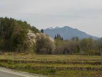 5月3日の景色 - 冬青窯八ヶ岳便り