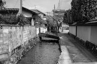 17京都〜堀の風景 - 散歩と写真 Fotografia e Passeggiata
