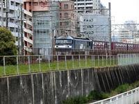 藤田八束の鉄道写真@貨物列車の写真撮影、JR西宮駅付近から・・・・貨物列車「桃太郎」の写真 - 藤田八束の日記