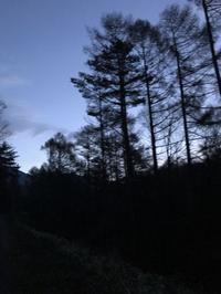 お散歩の途中Y家から - 木洩れ日の森から