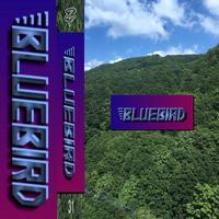 【Blue Bird】1st Cassette Tape『下水道に浮遊する臆病者』特設ページ - ZOMBIE FOREVER