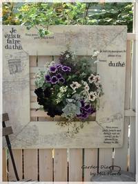 """Cappuccino & Euphorbia doible """"Diamond star"""" - Garden Diary"""