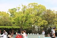 一度は訪れたい公園。。 - 一場の写真 / 足立区リフォーム館・頑張る会社ブログ