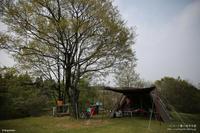 2017GWだよキャンプ@歌瀬キャンプ場 1日目 - パピヨン小雪の徒然日記