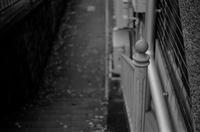 Leicaと過ごす休日 - Shuffle