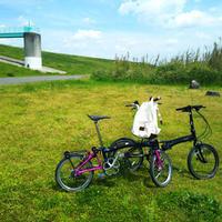 自転車に乗りすぎたこと。 - * cinqante - サンカント *