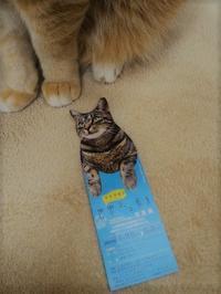 「世界ネコ歩き展」に行ってきました。 - 虹色せんべい