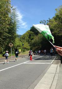 ハーフマラソンとこどもの日 - 山の布屋