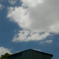 "p595 "" 三級浪高魚化龍  "" 松の川緑道    2017年5月5日 - 侘び寂び"