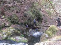 今期初の公式山行は、雨でした。川苔山 - 山歩きの記録