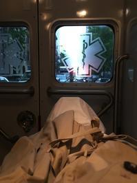 ERに運ばれる - ニューヨークでコウノトリ狩り