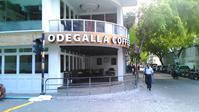 【首都マーレ】発見!おいしい朝食ビュッフェのある超穴場カフェ - モルディブをお得に賢く旅する!現地情報発信ブログ  Budget Travel Tips for Maldives!