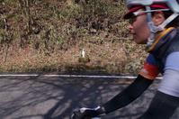Rapha Prestige Kuju 〜レポートpart3 ダンス・ウィズ・ミスタータンノ(3) - My Cycling Diary