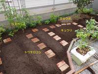 今年も食べられる庭を始動しました - 写真音痴の観撮日記