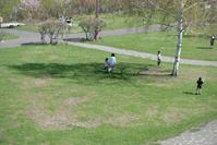 木陰 - いつもの風景