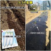 畑の記録 - ■■ Ainame60 たまたま日記 ■■