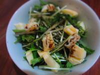 水菜とチーズのサラダ バルサミコソース - 恵茶房 meg tea labo