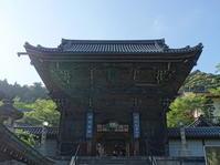 長谷寺  ~ぼたん祭~ - 雨 ときどき 晴れ