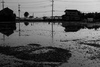 17さんぽ〜水温む頃 - 散歩と写真 Fotografia e Passeggiata