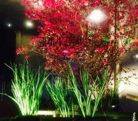 季節の花がお出迎え - 「美は観る者の眼の中にある」