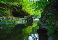 眩い緑の渓流 3 - 天野主税写遊館
