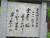 雲居の桜 - 地図を楽しむ・古代史の謎