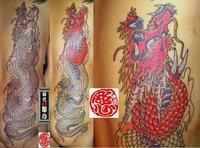 【紅 龍】彩色彫り開始 - 刺青処 東京 初代彫心