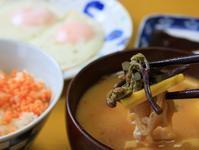 山菜の味噌汁な朝餉 - ぶん屋の抽斗
