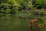 困った時の鳥見山 - toshi の ならはまほろば