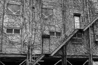 17さんぽ〜街歩き - 散歩と写真 Fotografia e Passeggiata