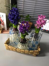 季節を彩る花達〜part.12〜 - マイペイジ。