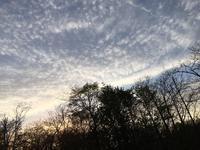 雲とダーラへスト - 何もしない贅沢