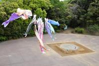 泳げ鯉のぼり - aya's photo