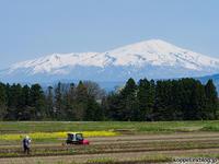GWは秋田、山形へ その4 - リスバカ日誌2