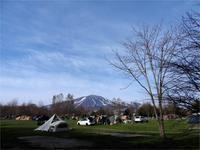 サクラ咲きました! - 北軽井沢スウィートグラス