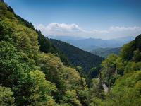 和田峠から甲武トンネルへ(クルマだけど) - 空のむこうに ~自転車徒然 ほんのりと~