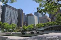 新緑の皇居から銀座四丁目までウオ-キング(^^♪ - 自然のキャンバス