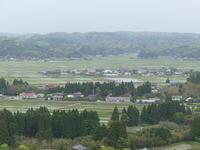 田植えのあと - 千葉県いすみ環境と文化のさとセンター