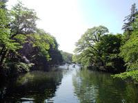 戦国散歩~吉祥寺(2)井の頭公園 - Suiko108 News
