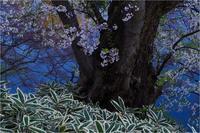 弘前の春 - duke days